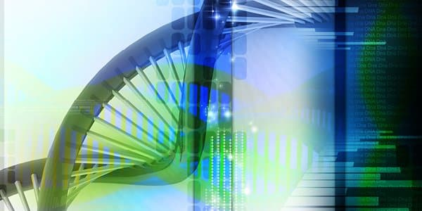 What happens to my DNA samples after testing?